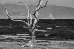 Pyramid Lake Black And White
